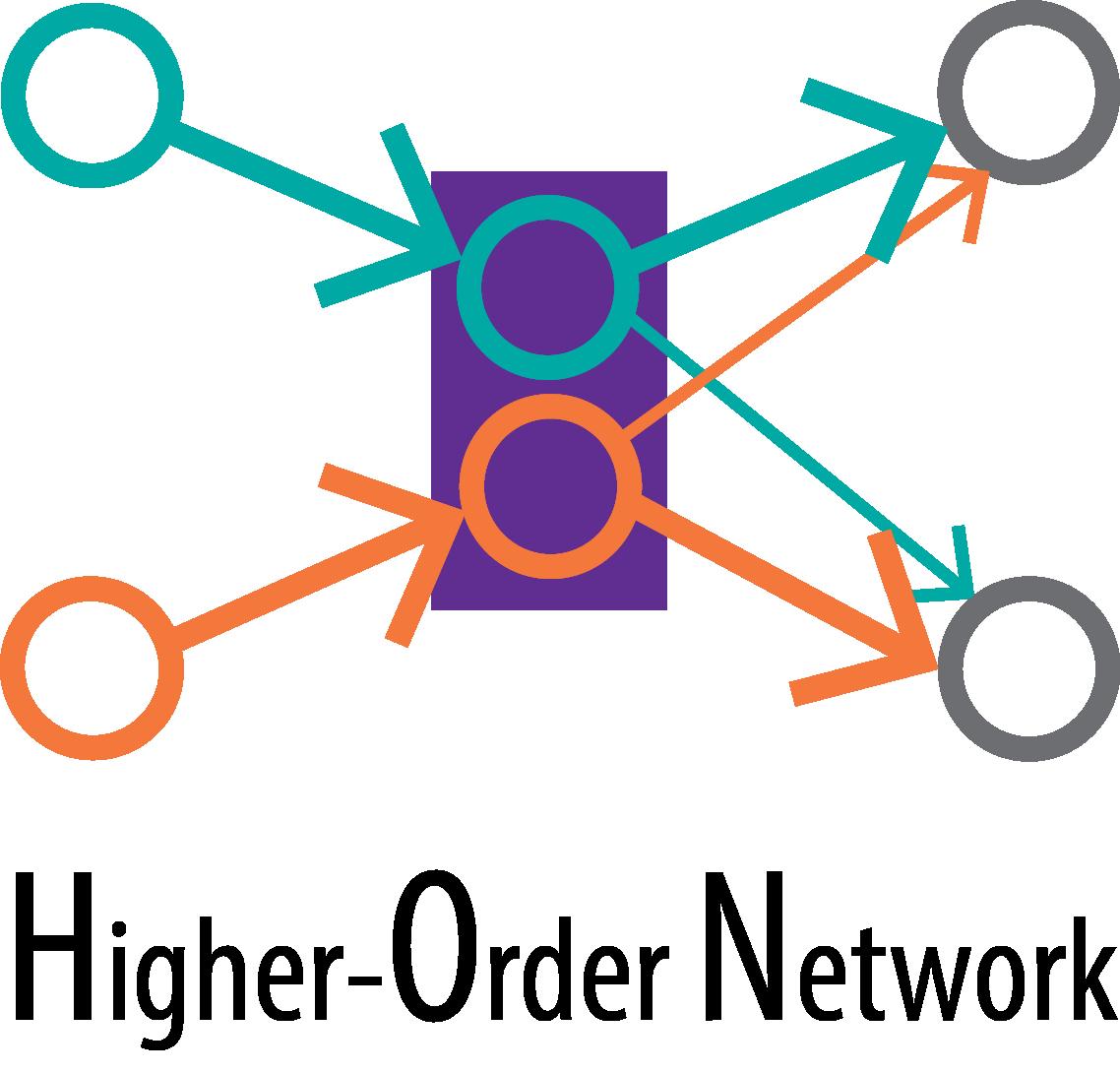 Higher-order network